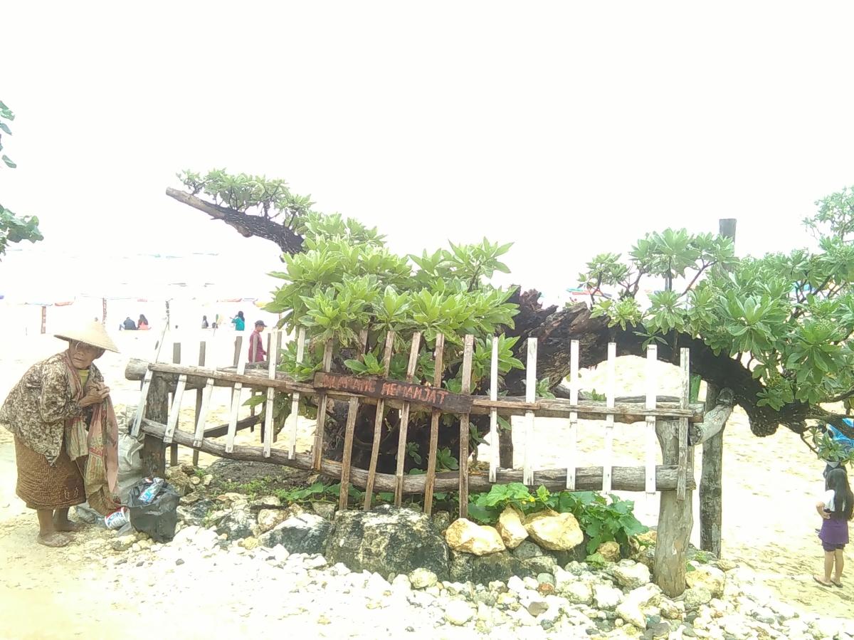 Jalan Menuju Pantai Pok Tunggal Yang Aduh hai